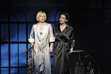 Národní divadlo moravskoslezské - Rebecca
